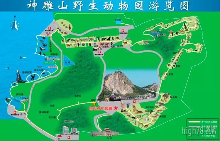 狮虎园为威海神雕山野生动物园的早先开启的游览园区,在这里生活着世